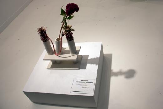 Camille henrot fragments dun discours amoureux- Kamel Mennour d'un discours amoureux - Kamel Nemmour Paris